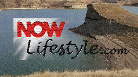 Now Lifestyle gives you the option to live life on your terms and carry on your daily life with an added energy and excitement. Don't sweat your bank account because this is an easy fix. It only takes a dollar to assess the program and decide if it is a fit for you. Otherwise, you can walk away with nothing to lose and nothing to gain. It's simply your choice with no pressure and no hidden fees. Anyways, hope that you make a decision to improve your health and well being today.